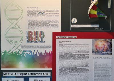 DNK20171